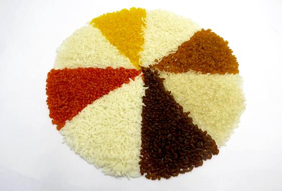 Sistema de producción de arroz nutricional